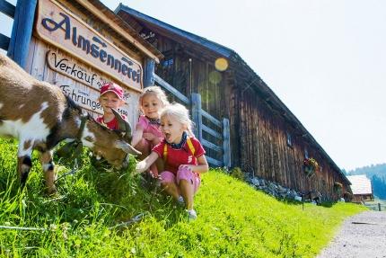 Wandern am Millstätter See – Urlaub am Millstätter See – Urlaub in Kärnten am See – Ferienhäuser am See