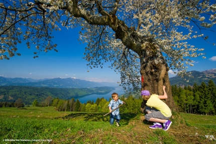 Millstätter See – Familien-Urlaub am Millstätter See – Urlaub in Kärnten am See – Ferienhäuser am See